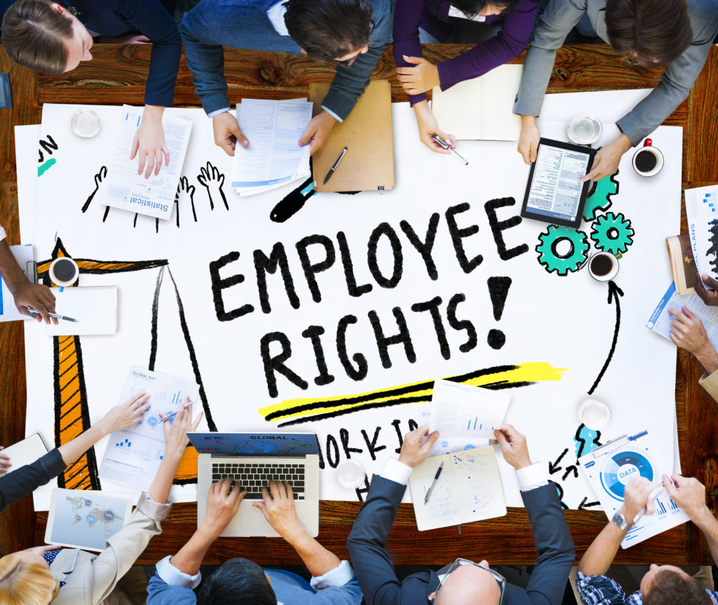 Knowing Your Rights with Employment Law